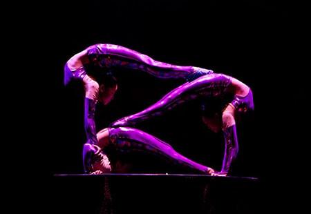 Cirque Ziva. Photo by Amitava Sarkar.