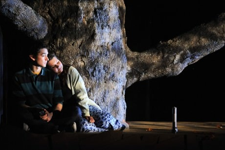 'The Swing of the Sea' at Arcadia University 2011. Photo by Fig Tree Photography.