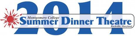 SDT2014_Title_Logo