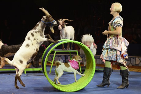 Jenny Vidbel. Photo courtesy of Big Apple Circus.