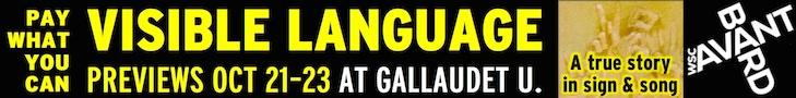 Visible Language banner 728x90