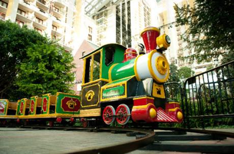 Potomac Express Train