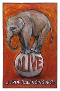 Todd Gardner: 'Elephant '