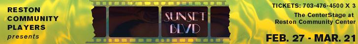 DCMet-SunsetWebAd-1r