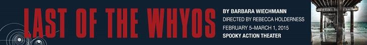 whyos728x90