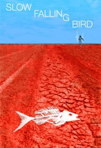 Slow_Falling_Bird_cropped_art_web