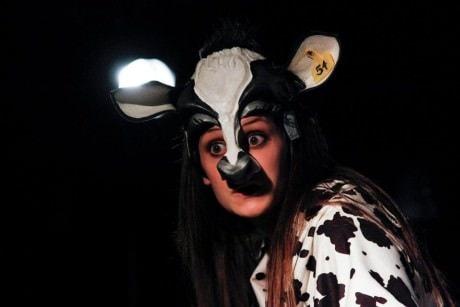 Katie Jeffries (Caroline the Cow). Photo by Curtis Jordan.