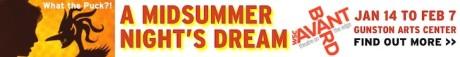 Midsummer banner 728x90