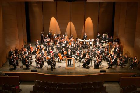 Symphony of the Potomac. Photo by David Friedlander.
