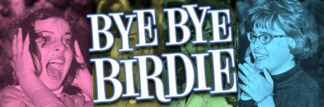 hr_BYE BYE BIRDIE