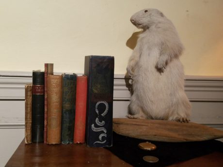 Artifacts from P.T. Barnum's life, used in David London's show. Photo courtesy of David London.