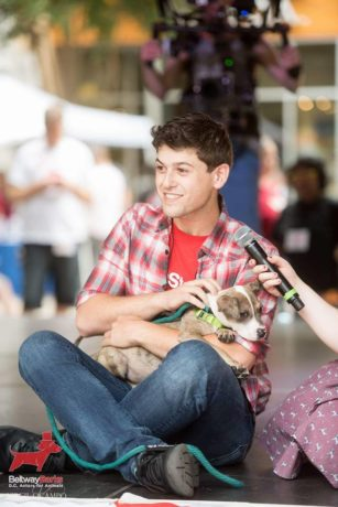 Actor Matt Hirsh introducing an adoptable dog at last year's Beltway Barks.