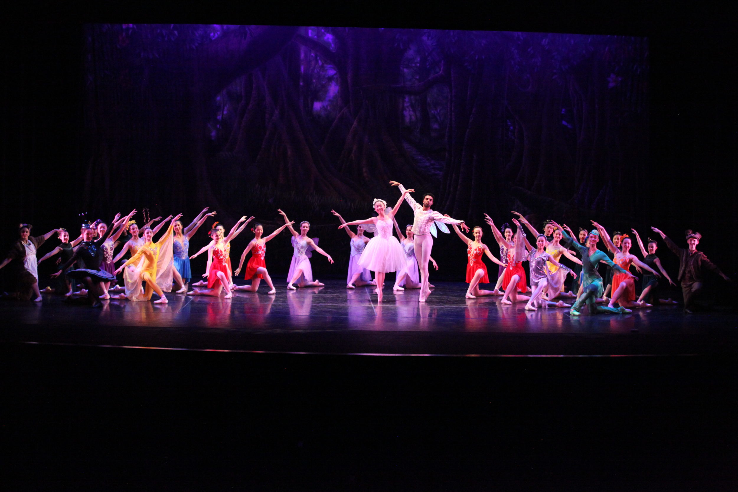 The finale of Metropolitan Ballet Theatre and Academy's 'Thumbelina.' Photo by Goli Kaviani.